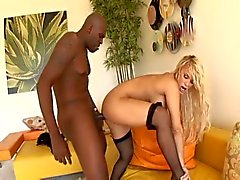 Black hunk lex drills shyla's white ass and pussy.