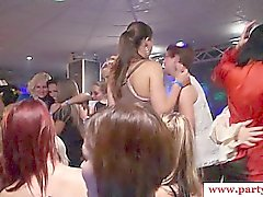 Euro party babes in amateur group suck